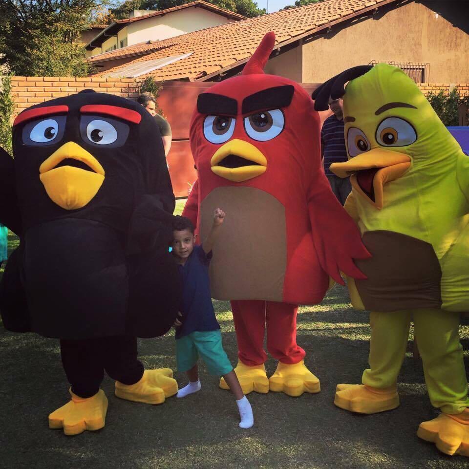 temas de festa infantil masculino angry birds